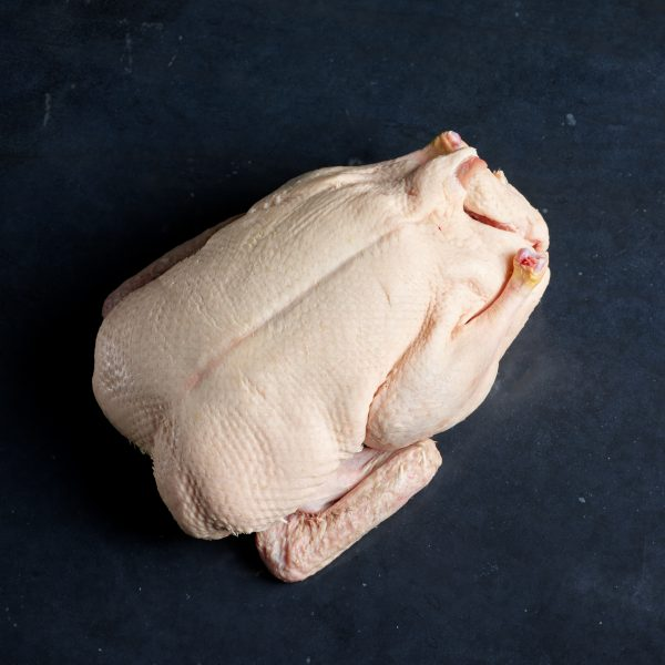 Duck Whole