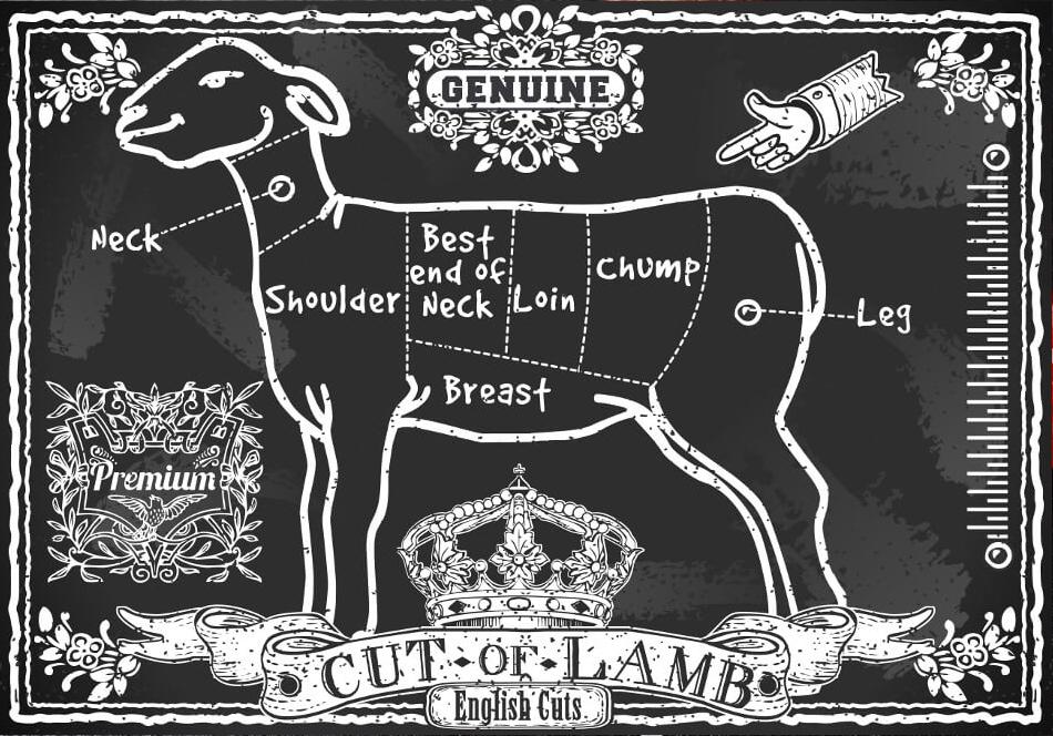 Lamb_Info_Diagram